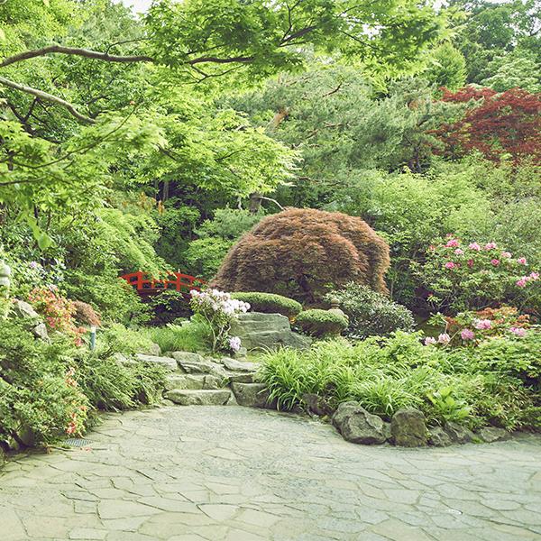 エルムガーデン日本庭園